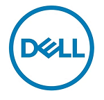 DELL 960GB SSD SATA Read Intensive 6Gbps 512e 2.5in Hot Plug S4510 Drive, 1 DWPD, 1752 TBW, For 14G Servers